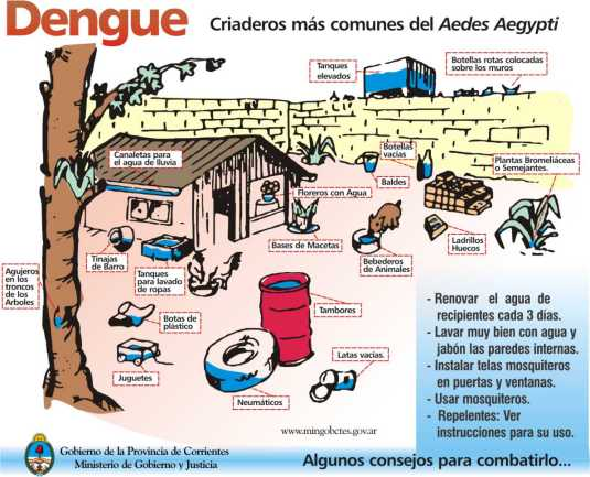 dengue_03-20-03-2007